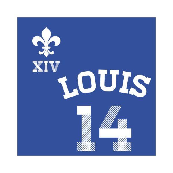 Louis 14 - Roi de France